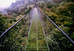 monteverde-bridge-costa-rica