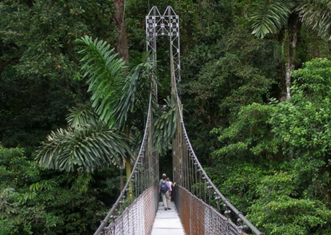 Explore Arenal Hanging Bridges, Tours and Information