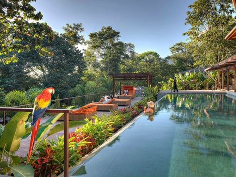 Explore Arenal Luxury Hotel Deals in Costa Rica