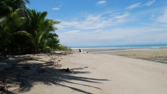 Explore Cabuya Beach Costa Rica