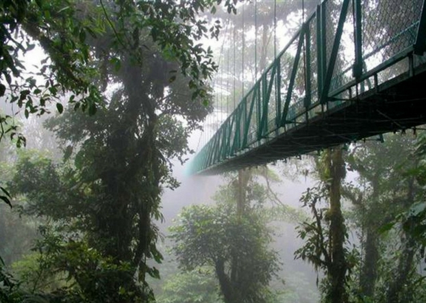 Explore The Hanging Bridges in Monteverde, Costa Rica