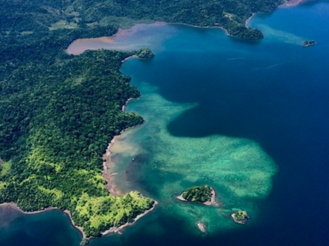 Explore Osa Peninsula Tours Costa Rica