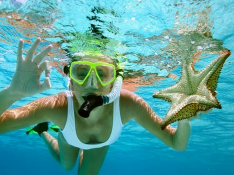 Explore Playa Flamingo Snorkel Tours Costa Rica