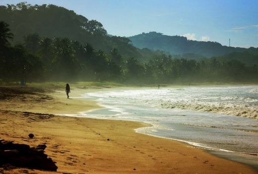 Explore Playa Samara Beach Rentals Costa Rica