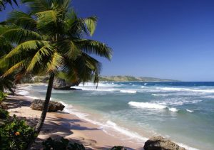 Explore Playa Tamarindo Beach Costa Rica