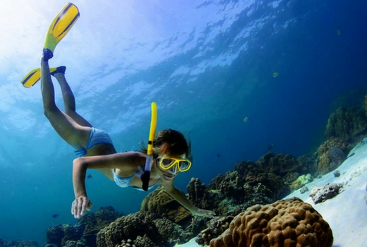 Explore Dominial Costa Rica Snorkel Beach Tours