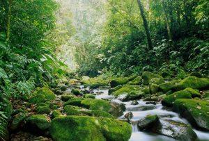 Explore Monteverde Tours, Costa Rica