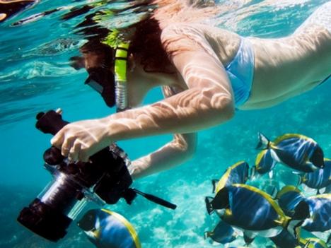 Explore Montezuma Snorkel Tours Costa Rica