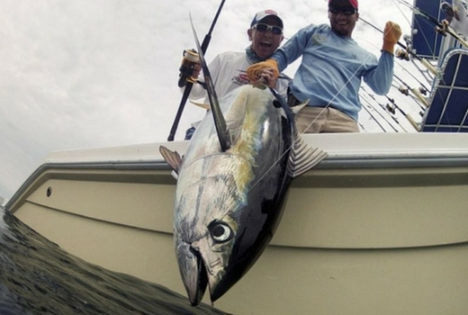 Explore Quepos Sport Fishing Tours Costa Rica