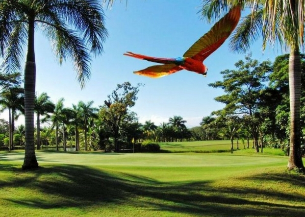 Explore Tambor Golf and Country Club Costa Rica